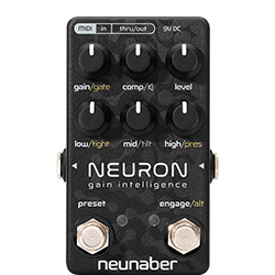Neunaber Neuron Gain Intelligence
